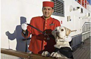 Perro en barco Queen Mary 2
