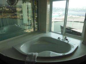 Baño panorámico
