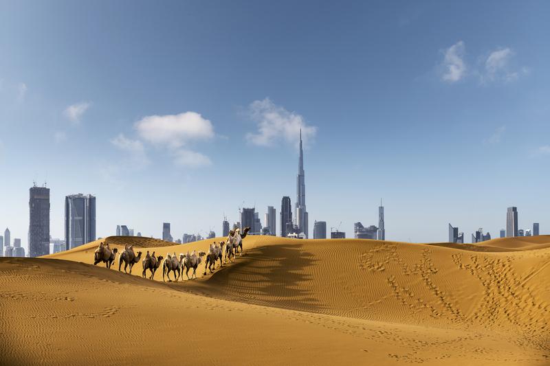 Cruceros por Dubái: 5 cosas que ver y que hacer