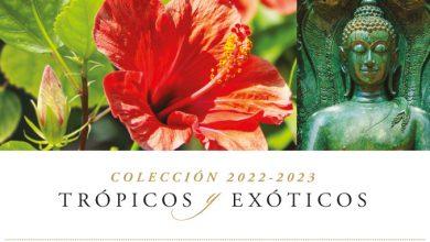 Cruceros trópicos y exóticos